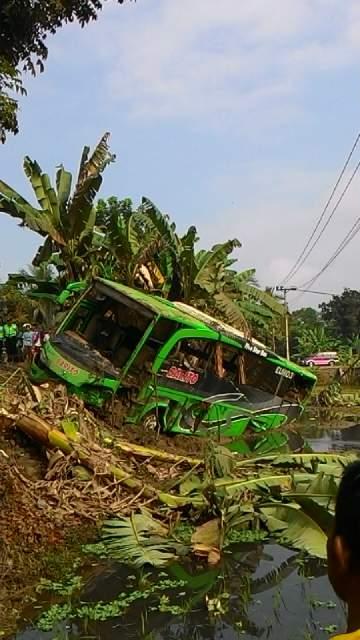 BUS JAKARTA-WONOSOBO MASUK SAWAH